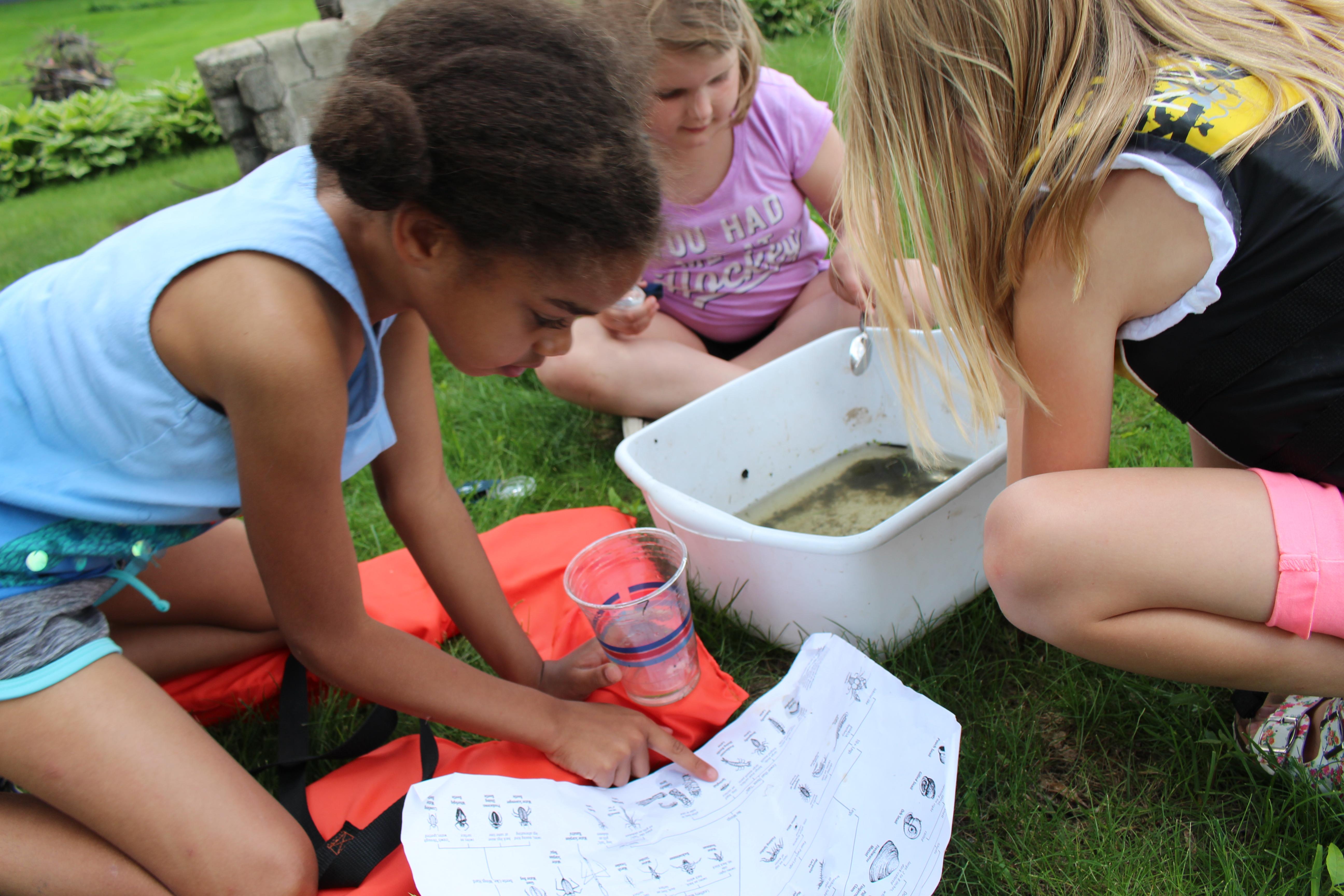 Students studying Macroinvertebrates